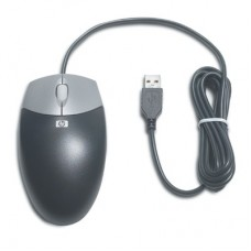 HP USB 2-Button Optical Scroll Mouse  (Carbonite/Silver)